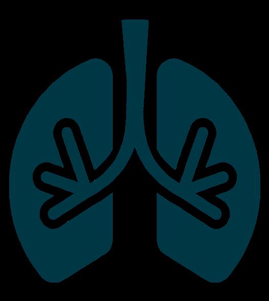 Wim Hof Methode Logo Atmung